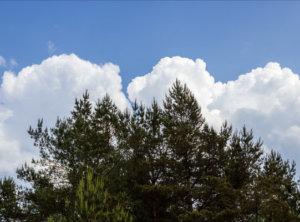 Timelapse cumulus wolken