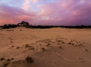 Zonsondergang zandverstuiving Veluwe