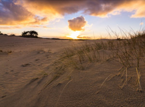 Timelapse zonsondergang zandverstuiving