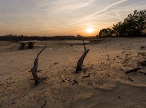 Zonsondergang Veluwe zandverstuiving