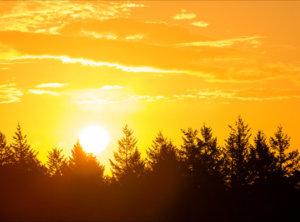 Timelapse zonsopkomst Veluwe (long)